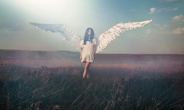 angel girl in field with wings by vika maksimova